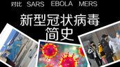 新型冠状病毒简史 与其他病毒疫情(SARS 埃博拉 猪流感)对比
