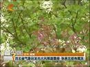 [看今朝]河北省气象台发布大风降温警报 张承北部有霜冻