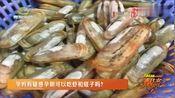 孕妈有疑惑孕期可以吃虾和蛏子吗