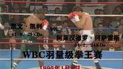凯文·凯利 vs 阿莱汉德罗·冈萨雷斯【1995-01-08】