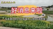 好消息来了!2月17日,浙江省除温州以外,立即取消省内卡点
