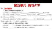 5-酶与ATP(学考复习)