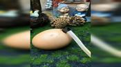 #优秀如我#做个假鸡蛋