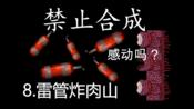 【泰拉瑞亚】禁止合成 8.打肉山太难了