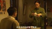 养父:林浩病情被揭穿,伪造假病历欺上瞒下,气得媳妇直接提离婚