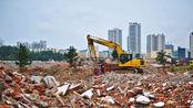 """价格暴涨300%,购买需村委会开证明?止涨节点在""""建筑垃圾利用"""""""