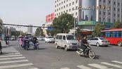 实拍河南新蔡县,驻马店南部地区的头号种子,你觉得怎么样