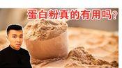 【科普】蛋白粉真的有用吗?