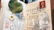 【Tn6】tn护照本拼贴|自制混合内芯|印章拼贴|手帐印章|轻复古|山泥泥|田丸