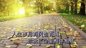 春雨的美丽-韩晓辉