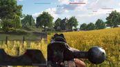 鸡苗不需要视力,钛合金狗眼鸡苗狙击战地V