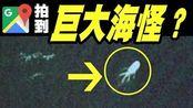 6张谷歌地图拍到的诡异照片,巨大海怪被卫星拍到?