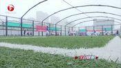 [安徽新闻联播]安徽省第四届职工运动会五人制足球赛在宿州举行