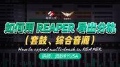 如何用 REAPER 导出分轨【蝙蝠电音课堂】