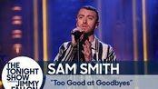 【吉米肥伦秀/生肉】萨姆·史密斯演唱- Too Good at Goodbyes。