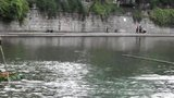 遵红广场舞:提供视频.遵义市竹漂协会成立十周年庆祝