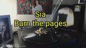 Sia––Burn the pages黑胶试听