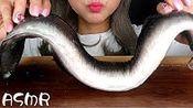 【gg】怪兽鳗鱼生姜韩国木桶吃秀木桶(2019年10月2日13时15分)