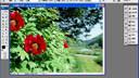 YU-24制作及放映全过程设置灯片的[www.163yu.com]主题外观