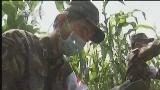 [视频]云南鲁甸6.5级地震:医疗队山区查水源 防疫病