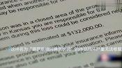 美国5岁熊孩子弄坏女神雕像 父母收到85万元账单